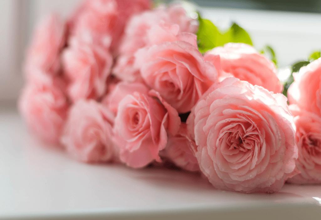 Welke bloemen passen bij jouw interieur?